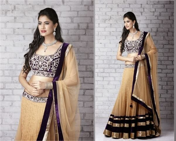 Amazing lehenga blouse designs